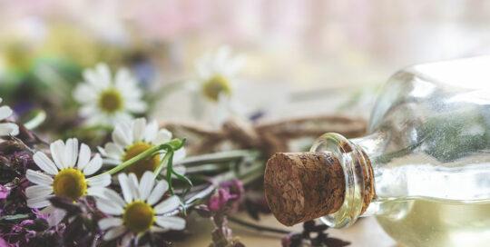 Fläschchen mit Bachblütenextrakt liegt zwischen Blüten